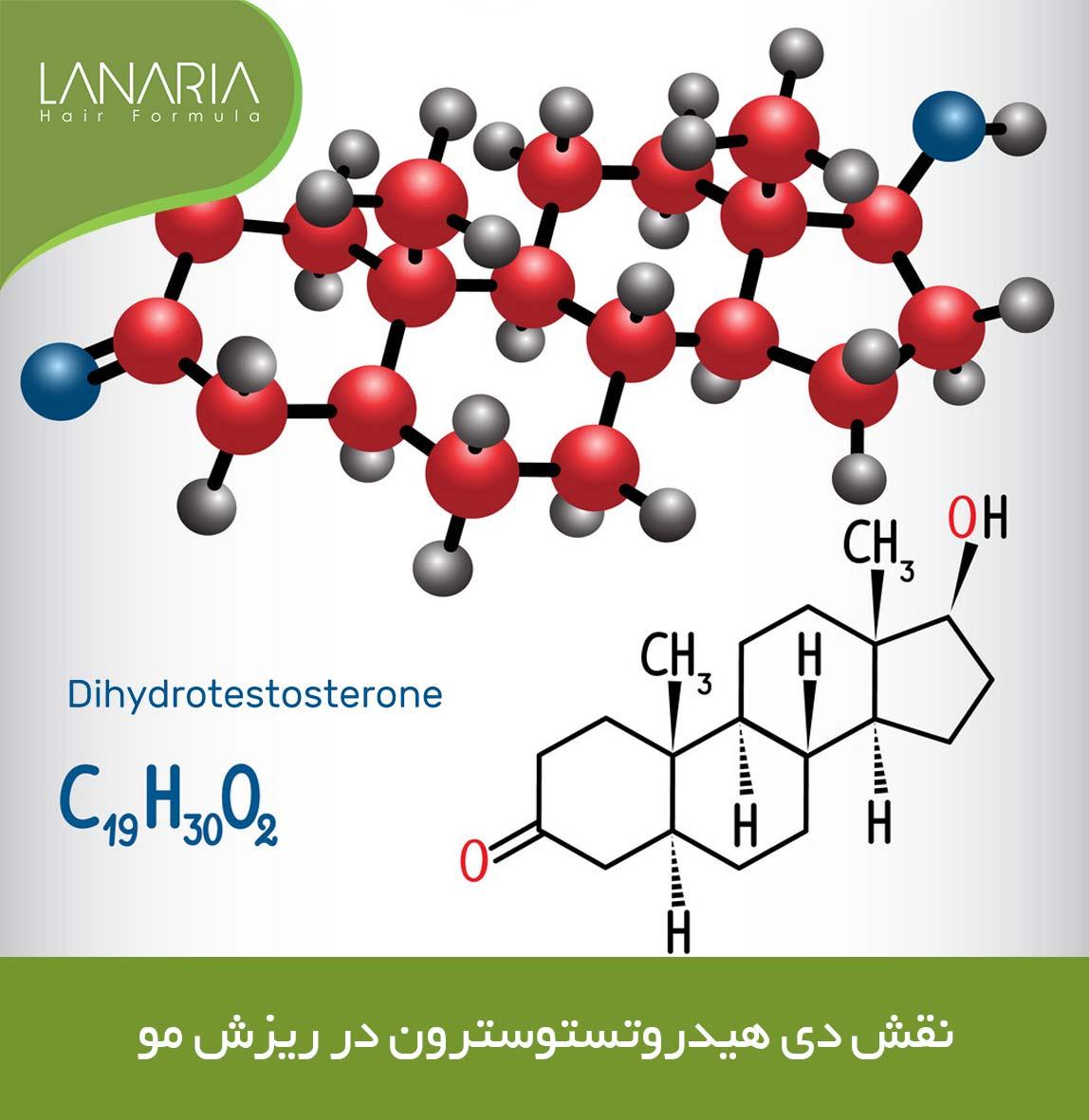 lanaria- نقش دی هیدروتستوسترون